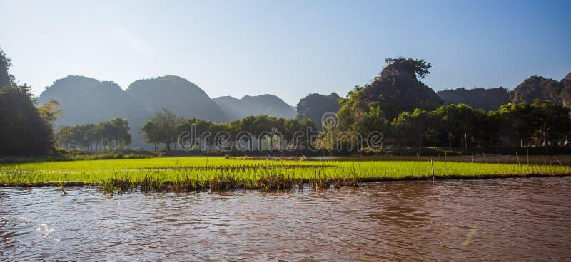 Boatman veerbotentoeristen langs de Halong-Baai bij de landtoeristische attractie in Tam Coc, Vietnam royalty-vrije stock fotografie
