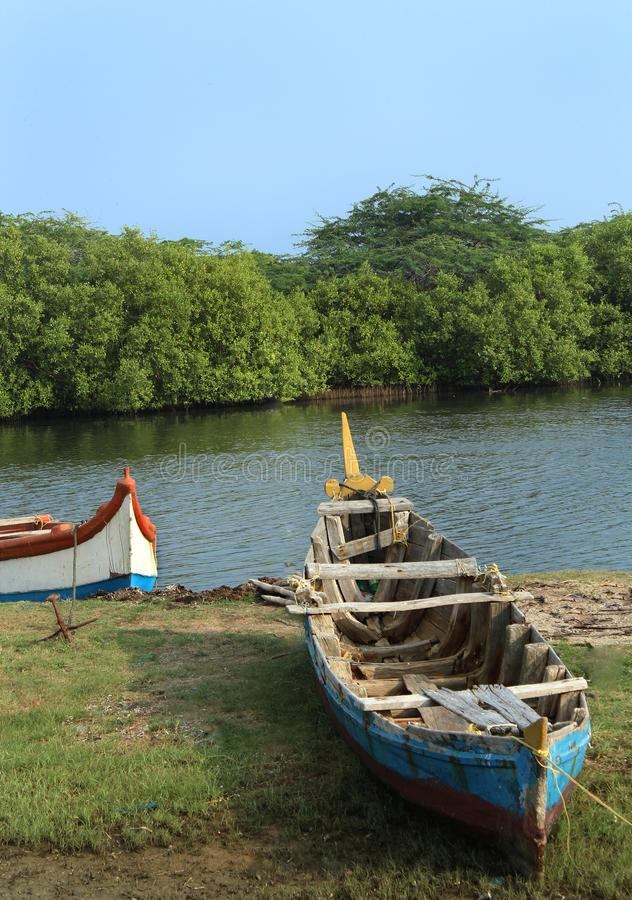 Boats on the backwater small harbor with mangrove trees. royalty free stock photo
