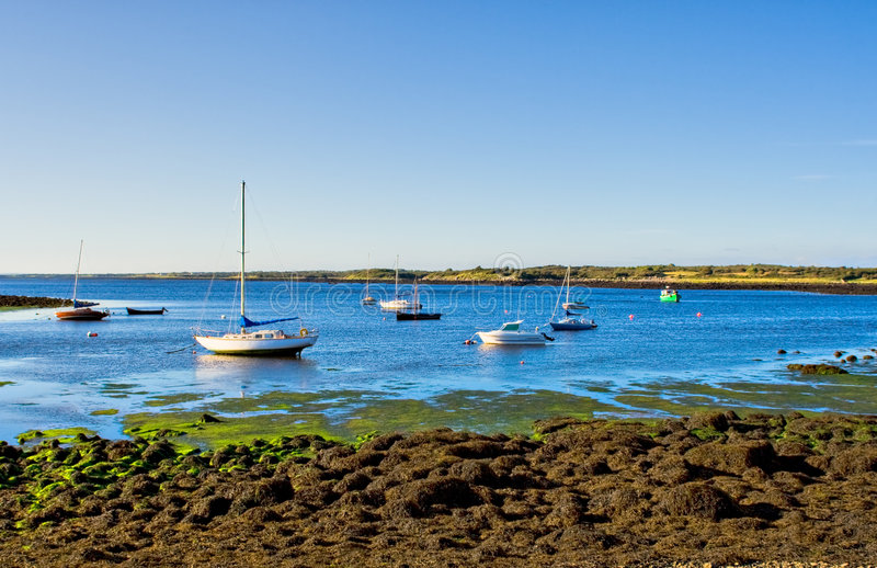 Download Boats on the Bay stock photo. Image of harbors, harbor - 3982978