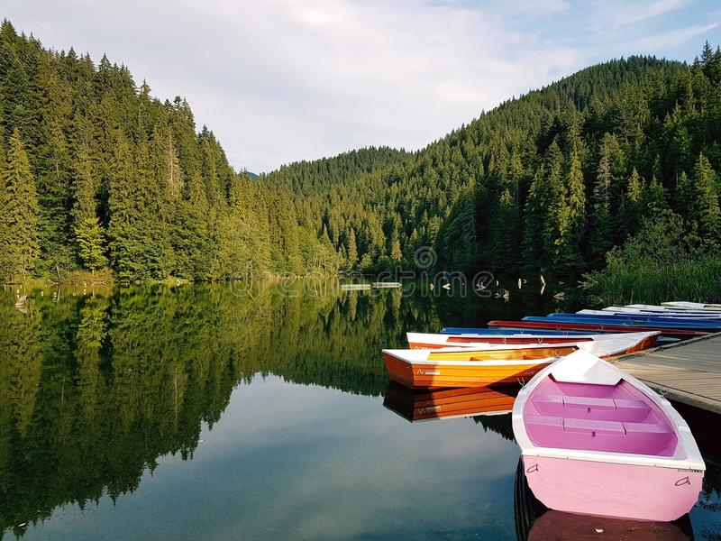 Boats On Calm Body Of Water Surrounded By Trees stock image