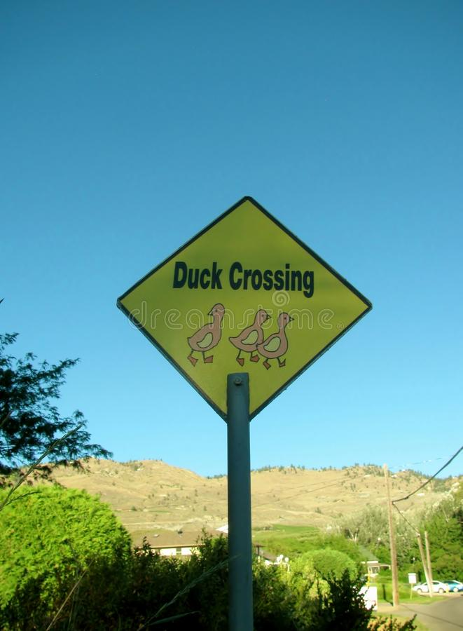 Duck Crossing road warning sign royalty free stock photography