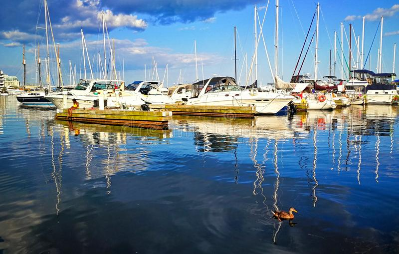 Boats and ducks on the Lake Ontario, Canada. Boats and ducks on Lake Ontario, Canada. Dark blue lake, light blue sky fill, light white clouds, leisurely fishing stock photo
