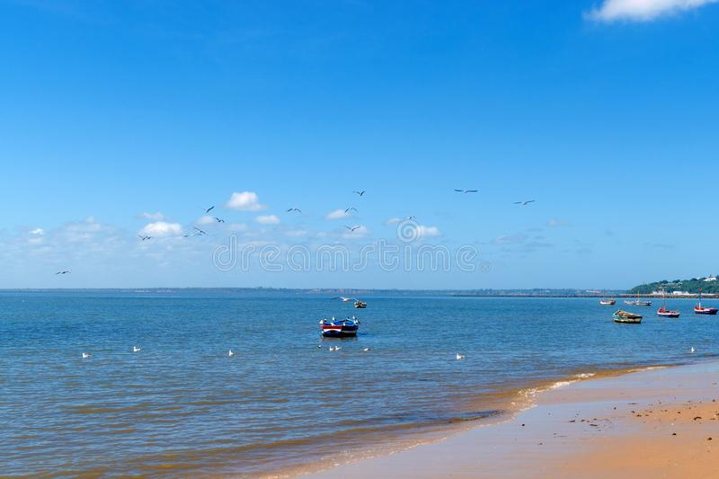 Boats of fishermen on the Indian Ocean in Maputo Mozambique. Africa royalty free stock image
