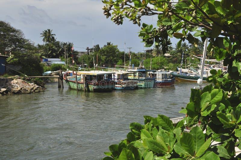 Boats on Hamilton canal, Negombo, Sri Lanka stock image