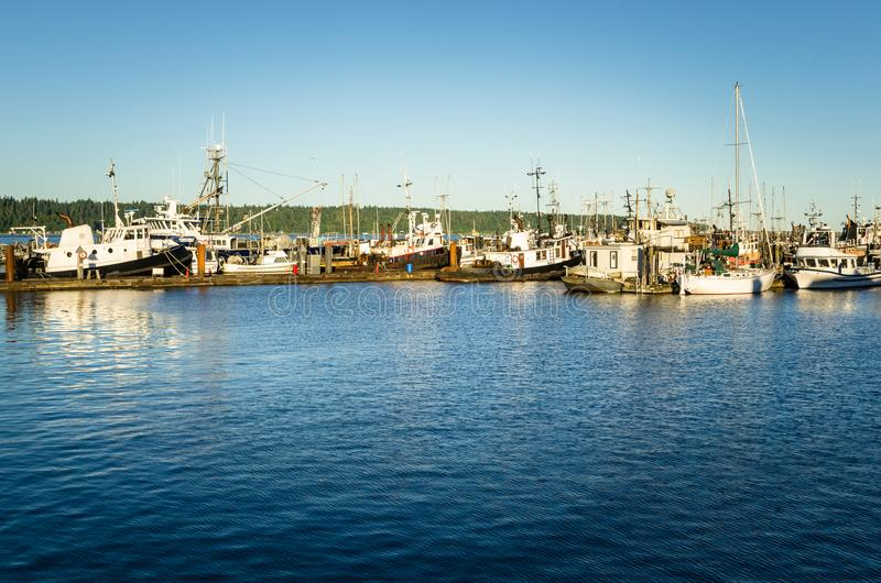 Boats in Harbour Lit by a Setting Sun. Tug Boats and Fishing Boats in Harbour at Sunset. Campbell River, BC, Canada stock image