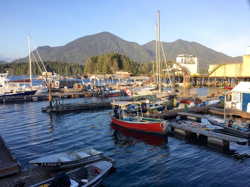 Boats in harbour in Tofino, Canada, on sunny spring evening. A sunny spring evening in Tofino on Vancouver Island, British Columbia, Canada. Boats in the harbour royalty free stock image