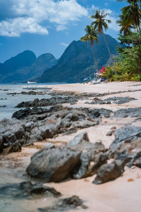 Boats in low tide under palm trees with amazing nature scenery rocky defocused foreground. Tropical travel landscape in. Philippines royalty free stock images