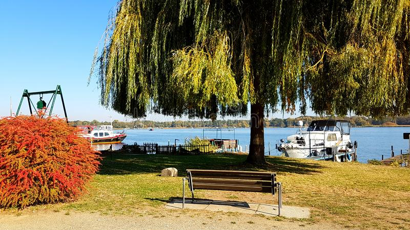 Boats lying at lake with a bank at coast. Rowing boats lying at lake with a bank at coast, view through branches of a weeping willow, natural background stock images