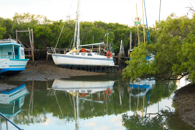 Boats and mangroves in Yeppoon, Australia. Queensland, Australia - May 28, 2016: Yachts and a working vessel sit high and dry above the water in Yeppoon`s royalty free stock photo