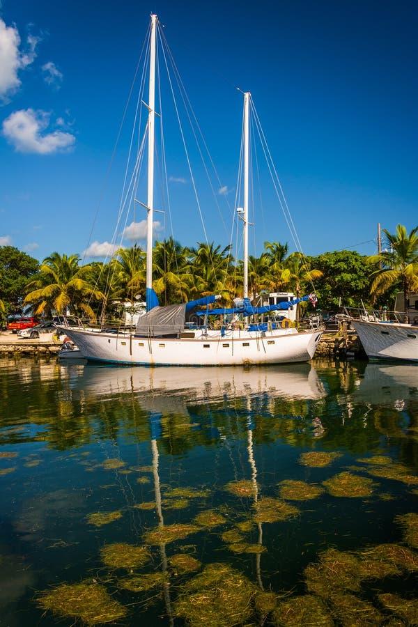 Boats at a marina in Marathon, Florida. stock photo