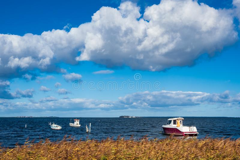 Boats and reeds on the Baltic Sea in Denmark.  royalty free stock photography