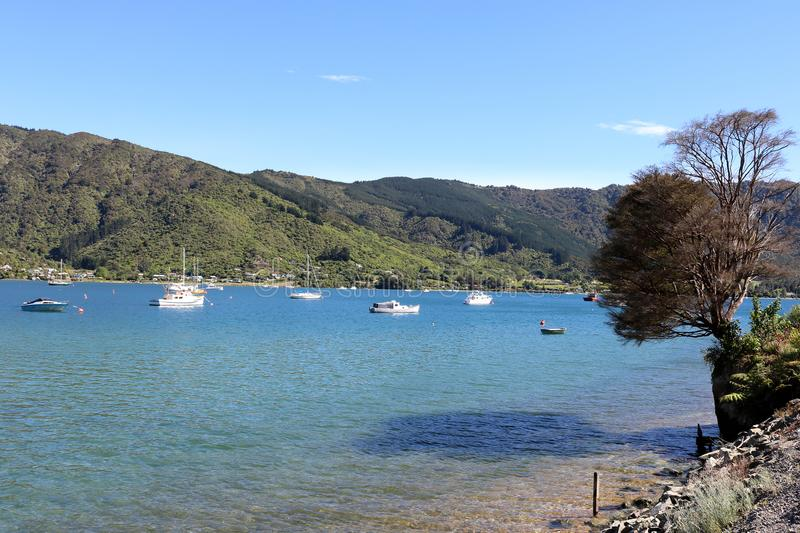 Boats and yachts, Marlborough Sounds, New Zealand. royalty free stock photos