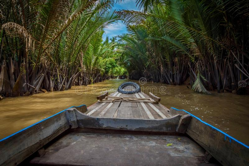 Boattrip Mekong μέσω του τροπικού δάσους του Βιετνάμ στοκ εικόνες με δικαίωμα ελεύθερης χρήσης