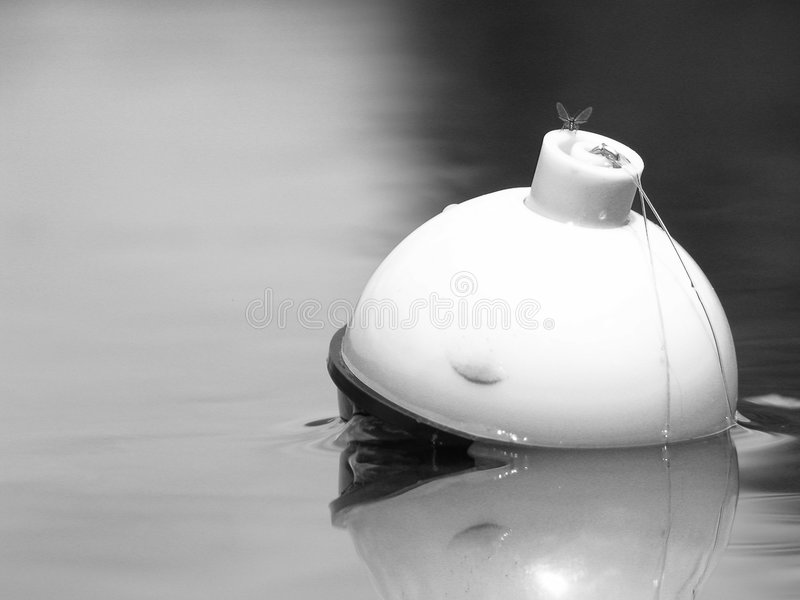 Bobber μύγα αλιείας Στοκ εικόνες με δικαίωμα ελεύθερης χρήσης