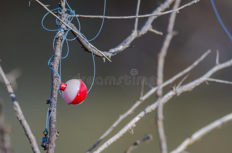 Bobber de pêche empêtré dans les branches d'arbre sèches photos stock