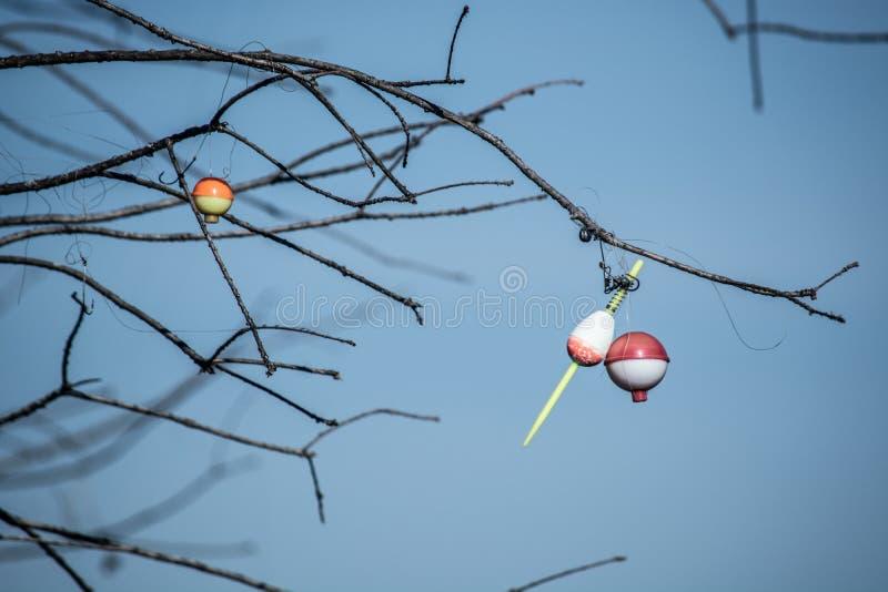 Bobbers рыбной ловли уловленные в дереве стоковые изображения