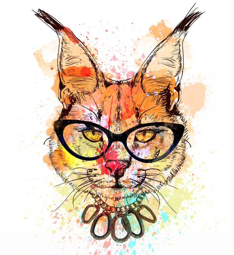 Bobcat character colorful portrait. Bobcat fashion colorful character portrait with glasses royalty free illustration