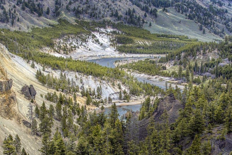 Bobina il fiume Yellowstone nel parco di Yellowstone immagine stock libera da diritti