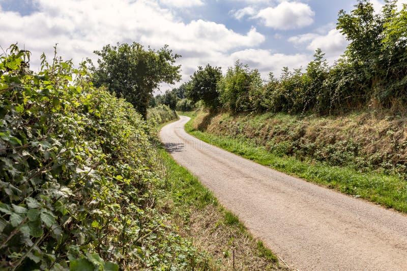 Bobina rural del carril del país en la distancia foto de archivo