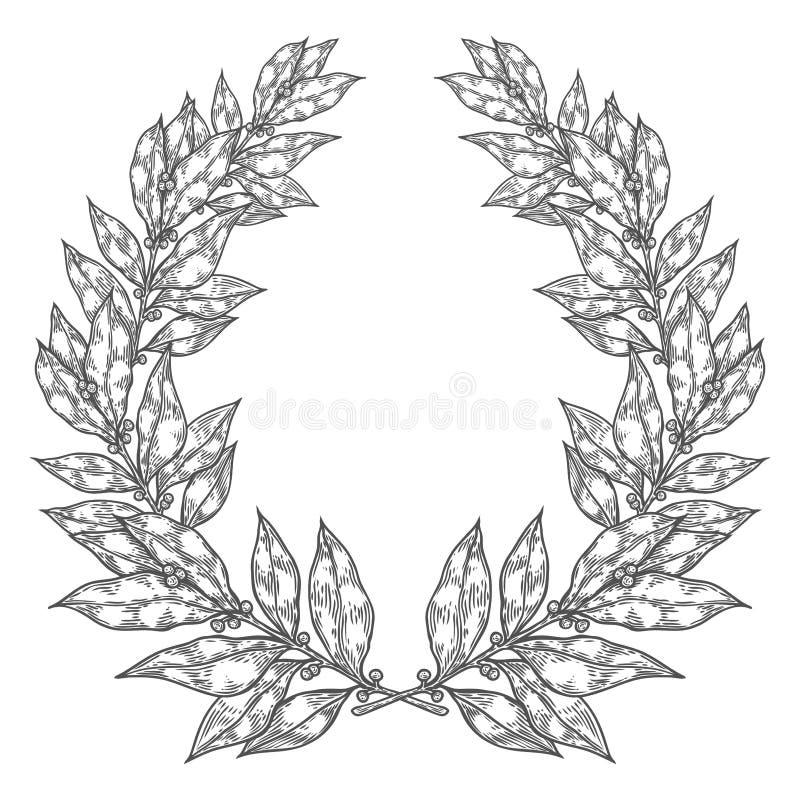 Bobka liścia Podpalana biała czarna ręka rysująca wektorowa ilustracja Rocznika dekoracyjny laurowy wianek ilustracja wektor