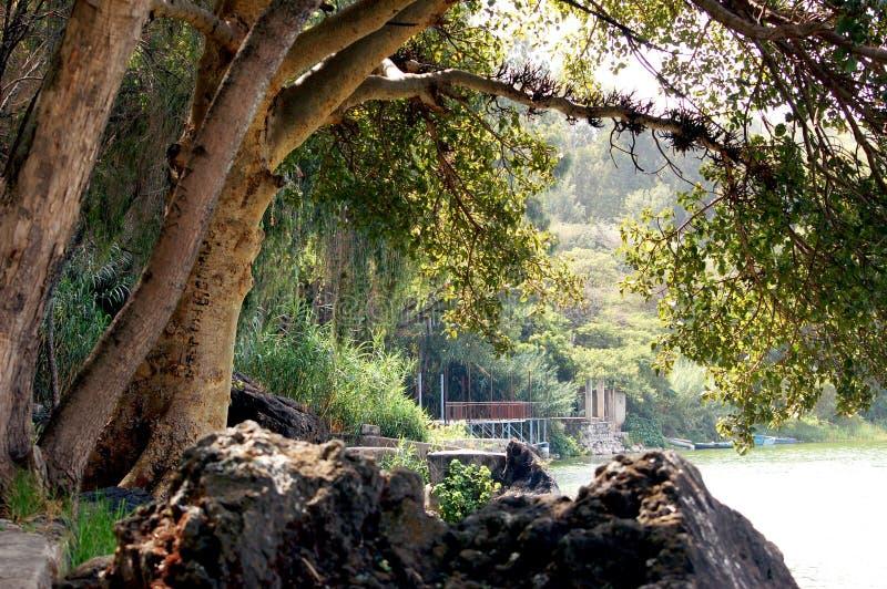 Bobogaya jezioro Etiopia zdjęcie stock