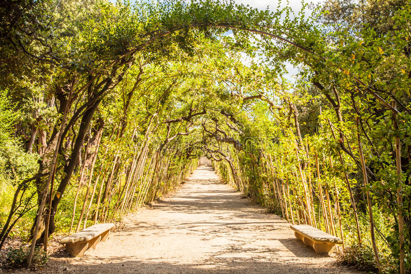 Boboli trädgårdar royaltyfri fotografi