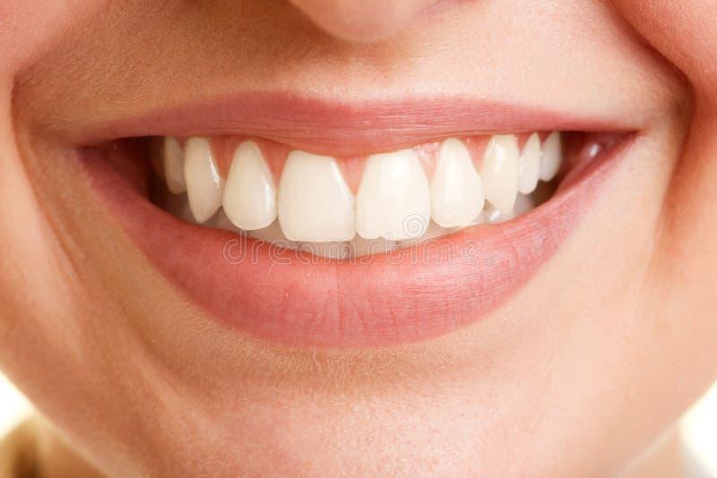 Boca abierta con los dientes blancos perfectos imagen de archivo libre de regalías