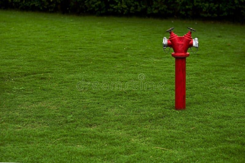 Boca de incêndio de fogo vermelho no gramado verde com espaço da cópia no lado esquerdo imagens de stock royalty free