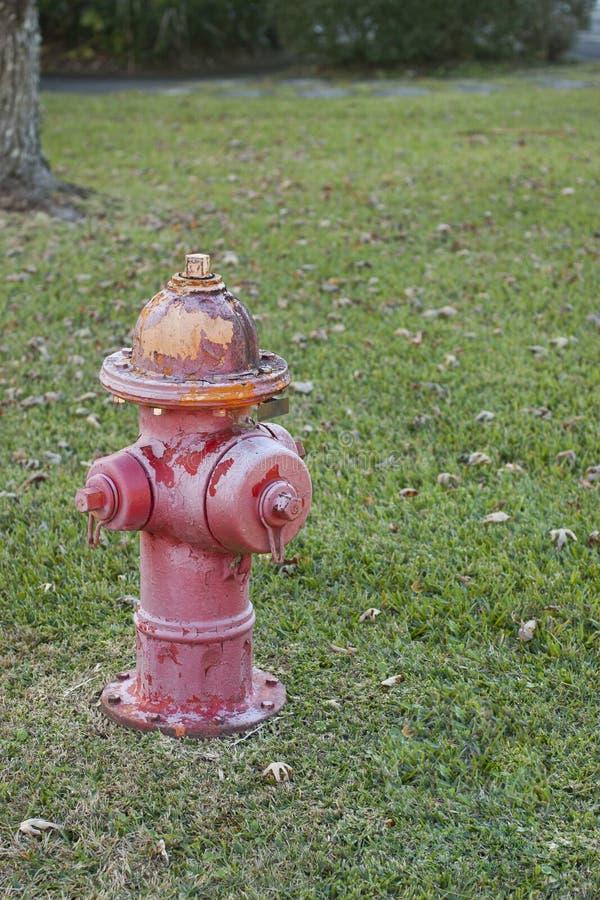 Boca de incêndio de fogo vermelho velha com fundo da grama foto de stock royalty free