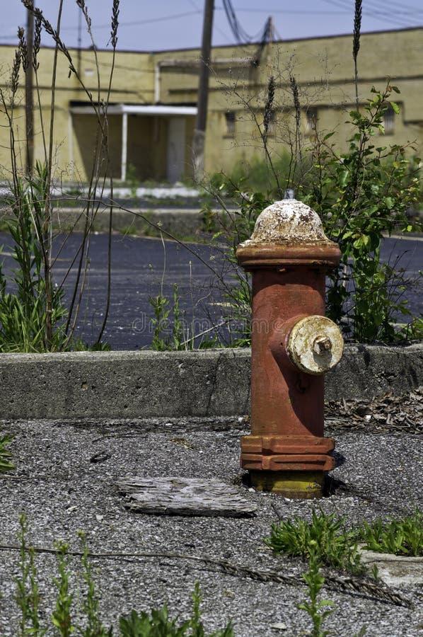 Boca de incendios y malas hierbas fotografía de archivo