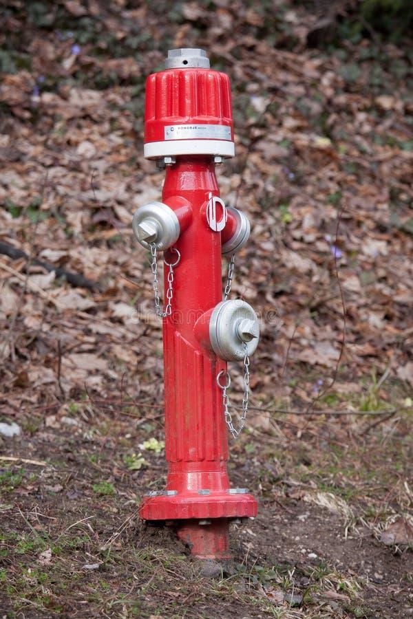 Boca de riego de fuego rojo imagen de archivo