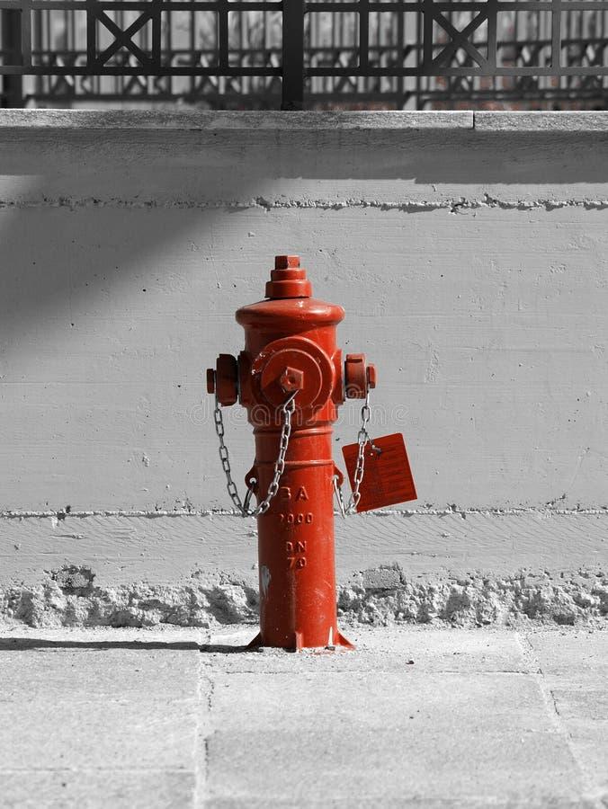 Boca de riego de fuego rojo imagenes de archivo
