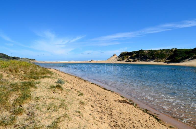 Download Oceano & sandunes do rio imagem de stock. Imagem de grama - 29843953