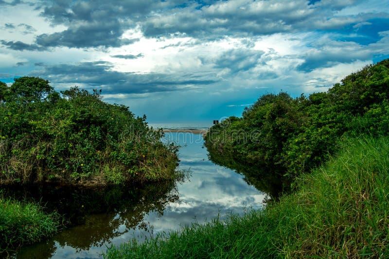 Boca de rio pequena perto do mar com reflexões imagem de stock