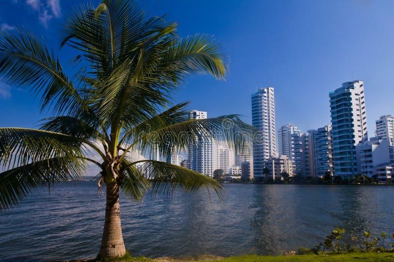 Boca grand - Carthagène de Indias images stock