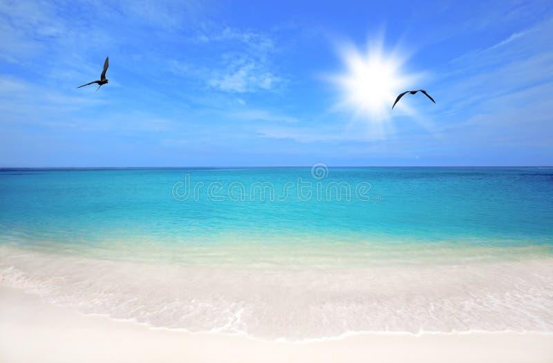 Boca Grandi Strand lizenzfreie stockfotos
