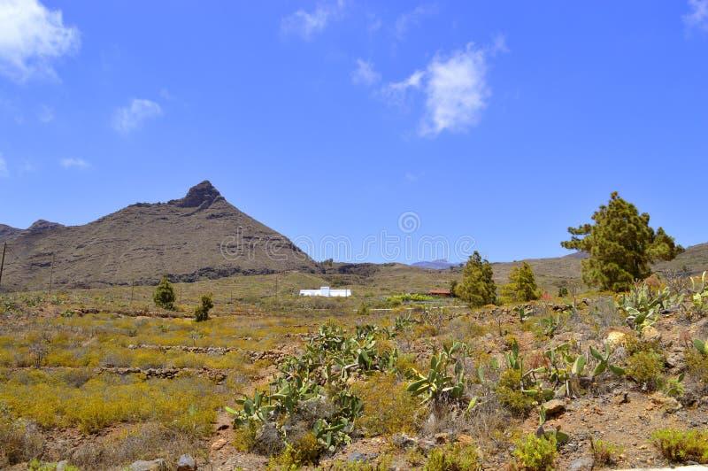 Boca Tauce在登上泰德峰国家公园 库存照片