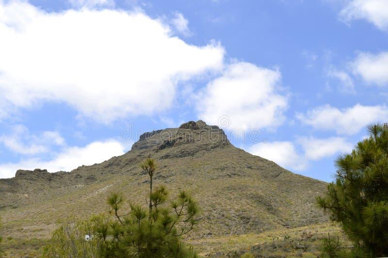 Boca Tauce在登上泰德峰国家公园 免版税库存图片
