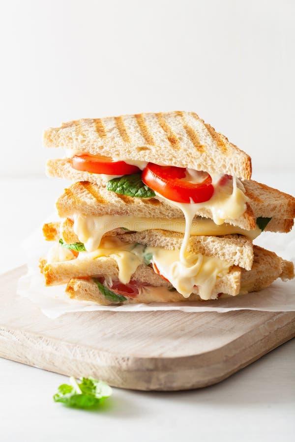 Bocadillo asado a la parrilla del queso y del tomate en el fondo blanco imágenes de archivo libres de regalías