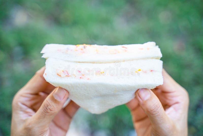 Bocadillo del palillo del cangrejo con mayonesa foto de archivo
