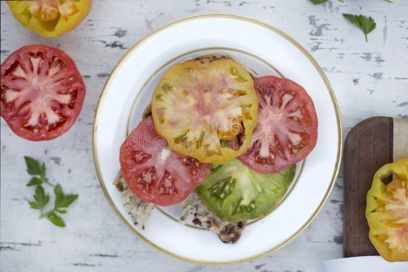 Bocadillo del tomate foto de archivo libre de regalías