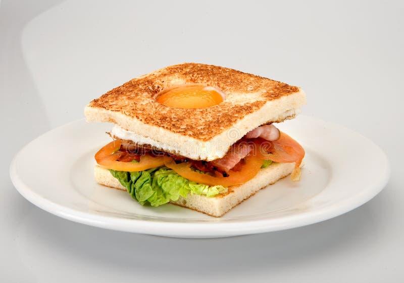 Bocadillo mezclado con el huevo, el tocino, la lechuga del tomate y el queso fotografía de archivo libre de regalías