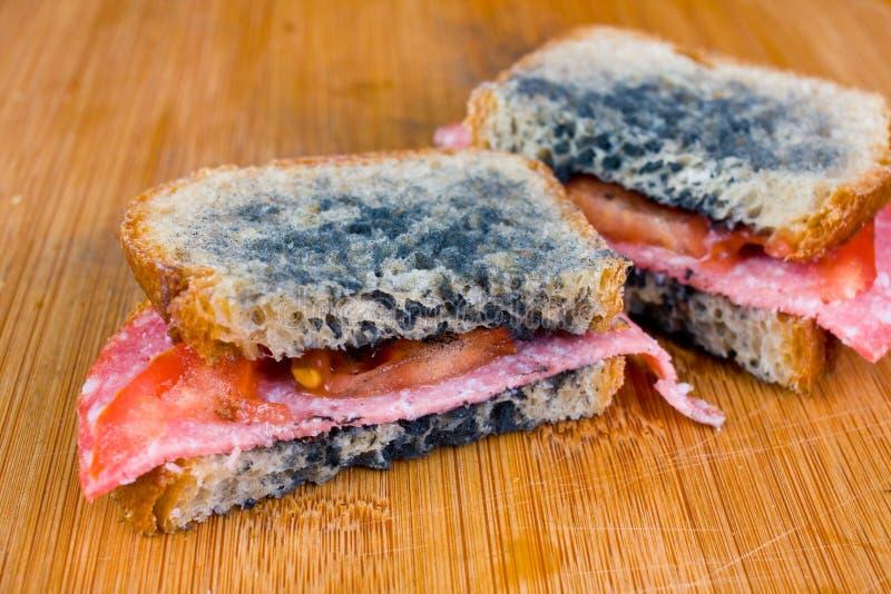 Bocadillo mohoso con el salami, tomates en una tajadera foto de archivo