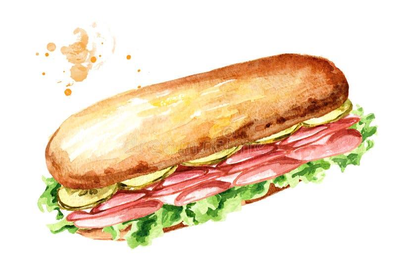 Bocadillo sub con el jam?n y las verduras Ejemplo dibujado mano de la acuarela, aislado en el fondo blanco ilustración del vector