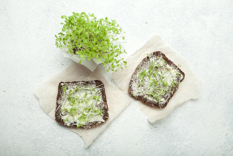 Bocadillos sanos de un pan sin levadura con la ensalada de la lechuga en las servilletas blancas Verde micro como concepto de nut imagen de archivo