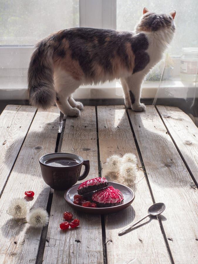 Bocado delicioso con las melcochas y el café En el fondo, el gato mira hacia fuera la ventana foto de archivo
