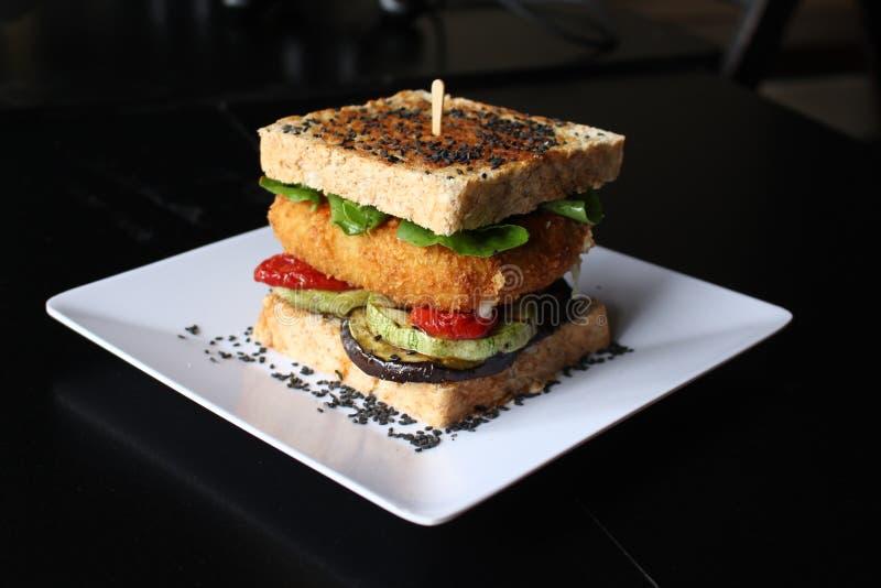 Bocado vegetariano del queso imagen de archivo