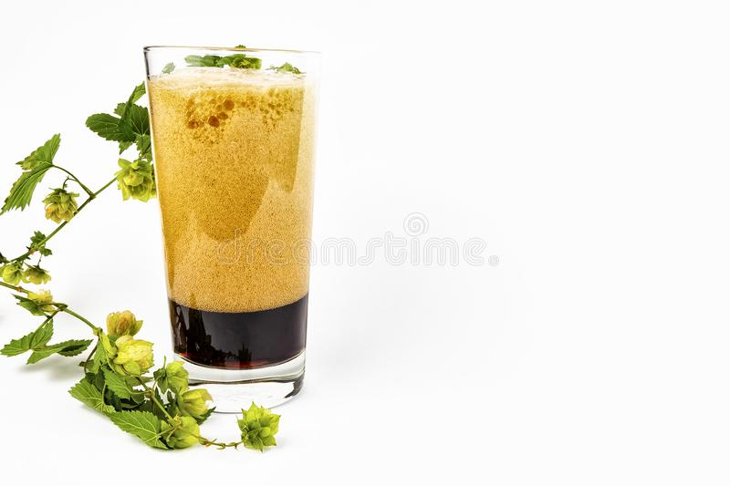 Bocas with dark beer and a sprig of hops on a white background. royalty free stock images