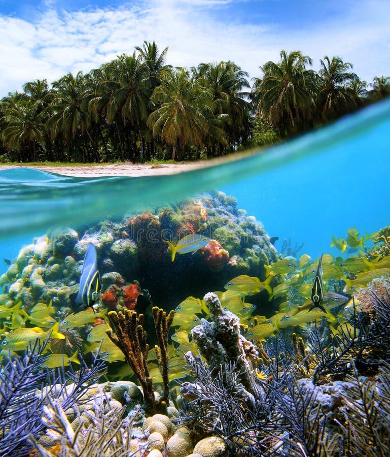 Bocas Del Toro Island Royalty Free Stock Images