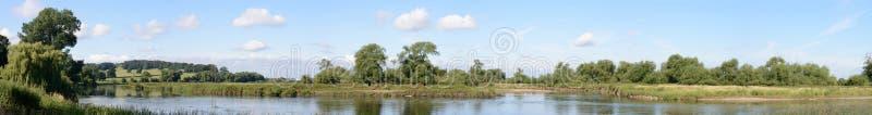 Bocca della colomba del fiume immagine stock